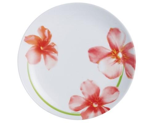 Тарелка десертная LUMINARC SWEET IMPRESSION 19 см (J1333)